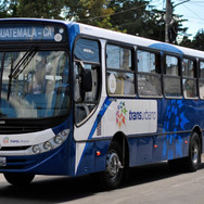 Branding - Bus