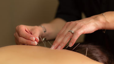Red Crane Wellness-Web (38 of 68).jpg