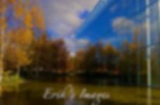 Fall Colors; Jaqua Center; University of Oregon