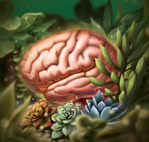 Brain Health Journal