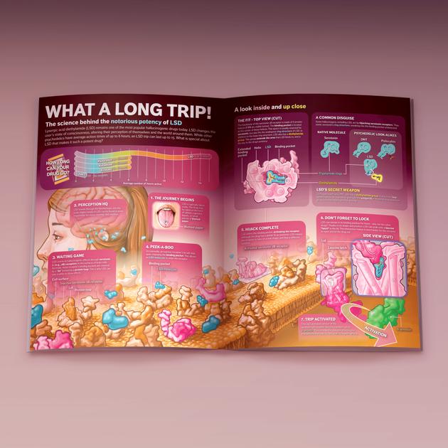 Magazine spread: LSD
