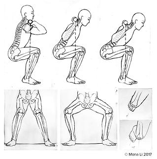 Rough draft: Squat technique journal illustration
