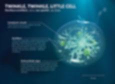 Noctiluca Scintillans (Sea Spakle) Cell 3D Illustration