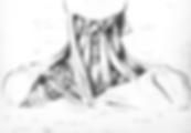 MSC1001Y-PSRender-Template_sketch.png