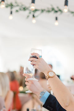 cheers toasting LR.jpg
