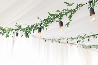 ceiling greenery 3 LR.jpg