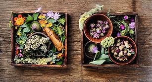 healing-herbs-herbal-medicine-5B7WTPV.jp