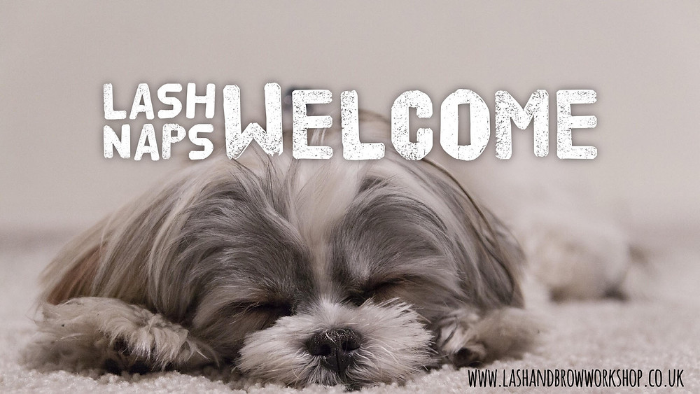 Lash Naps welcome here at Lash & Brow Workshop in Torquay! Relax & wake up with a gorgeous set of Eyelash Extensions.