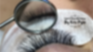 Torquay Eyelash Extensions