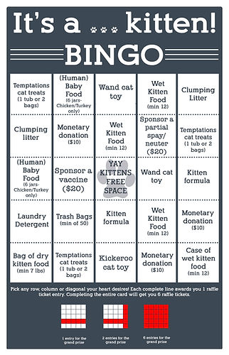 bingo card kitten shower 2020.jpg