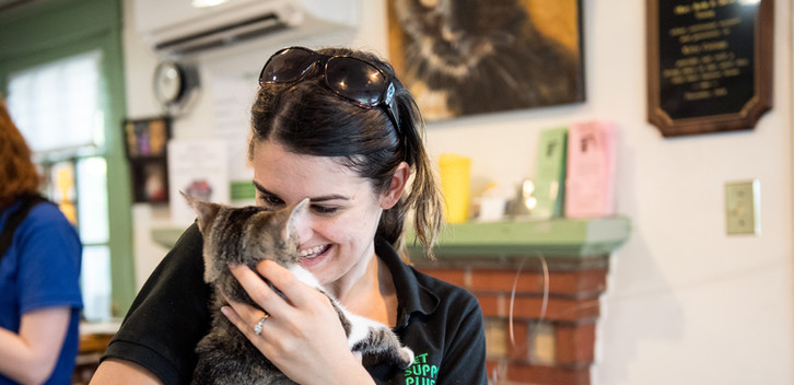 kitties_clear_the_shelters037 (1).jpg