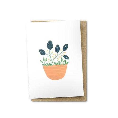 Terracotta Pot Card $6
