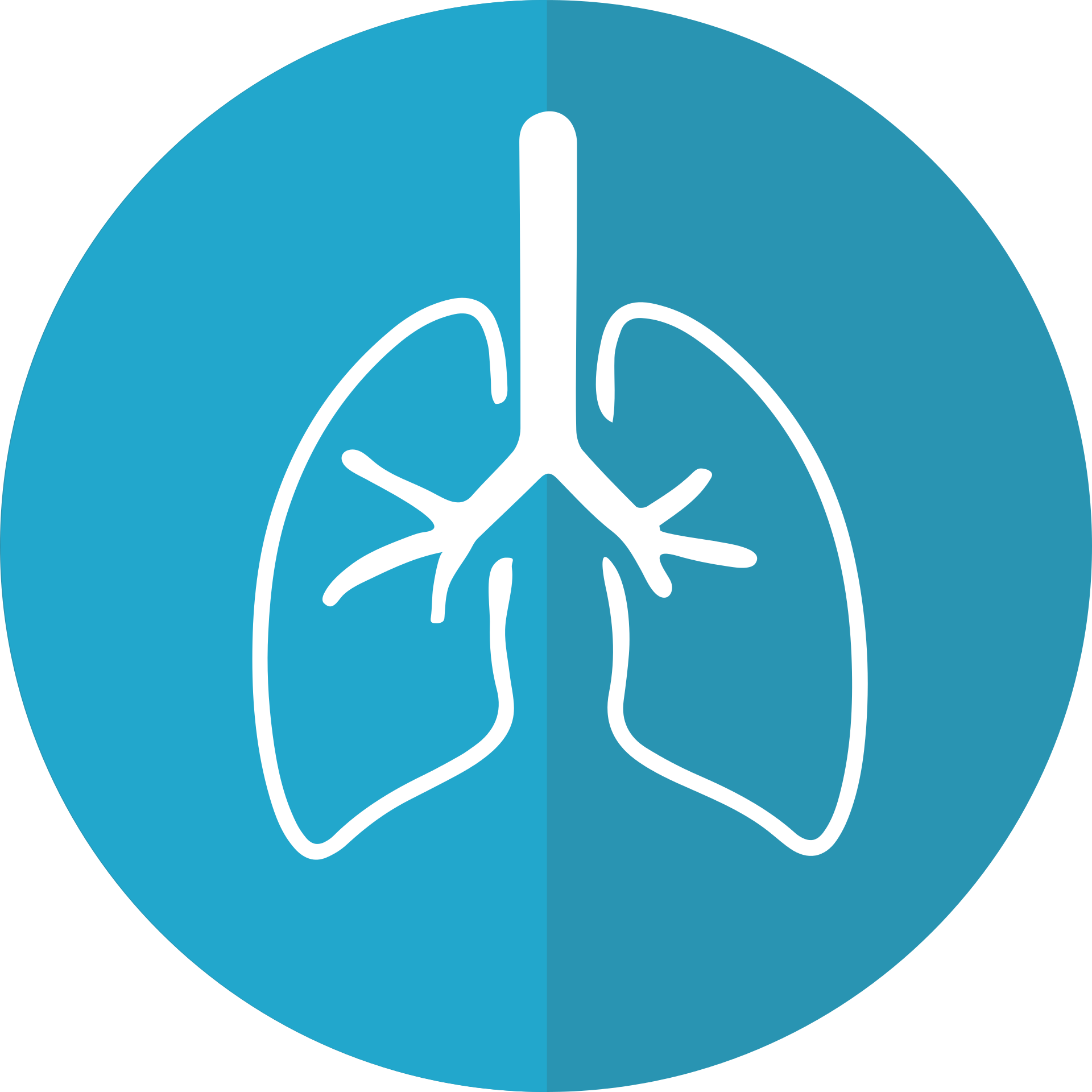 lungs-2803208.png