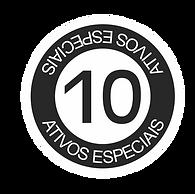 10 ATIVOS ESPECIAIS.png