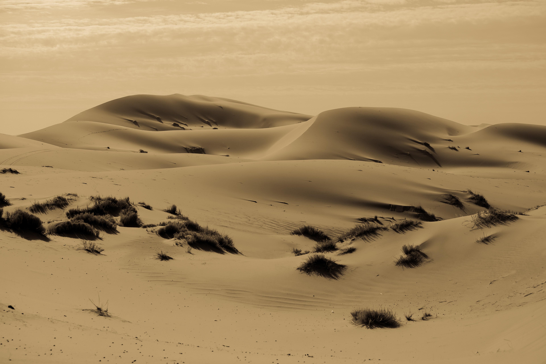 Maroc Desert (6 of 15)