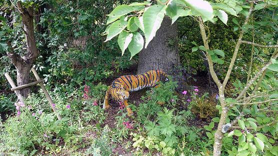Joy Parker_ tiger in the landscape_2020.