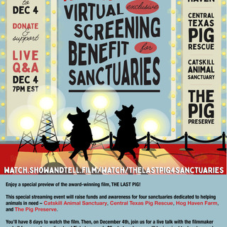 Virtual Screening Flyer