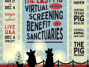 Virtual Screening to Benefit 4 Sanctuaries