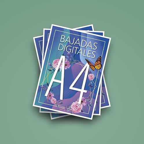 11 a 50 Bajadas A4  Papel + Impresión