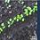 Thumbnail: Power Seeds - Book