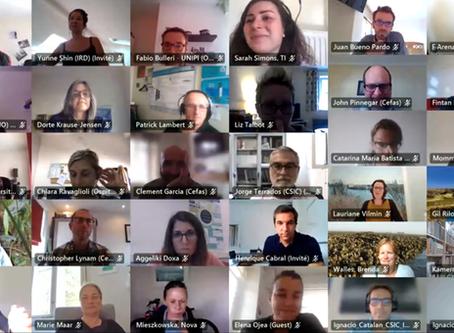 FutureMARES hosts kick-off meeting online