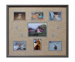 Puppy Photos & Paw Prints