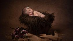 Harper, newborn photoshoot