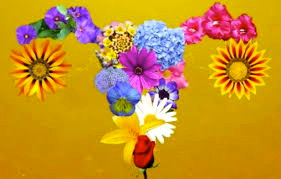 The Feminine Bouquet