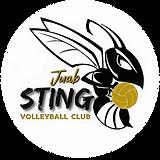 Juab Sting Circle Logo.webp