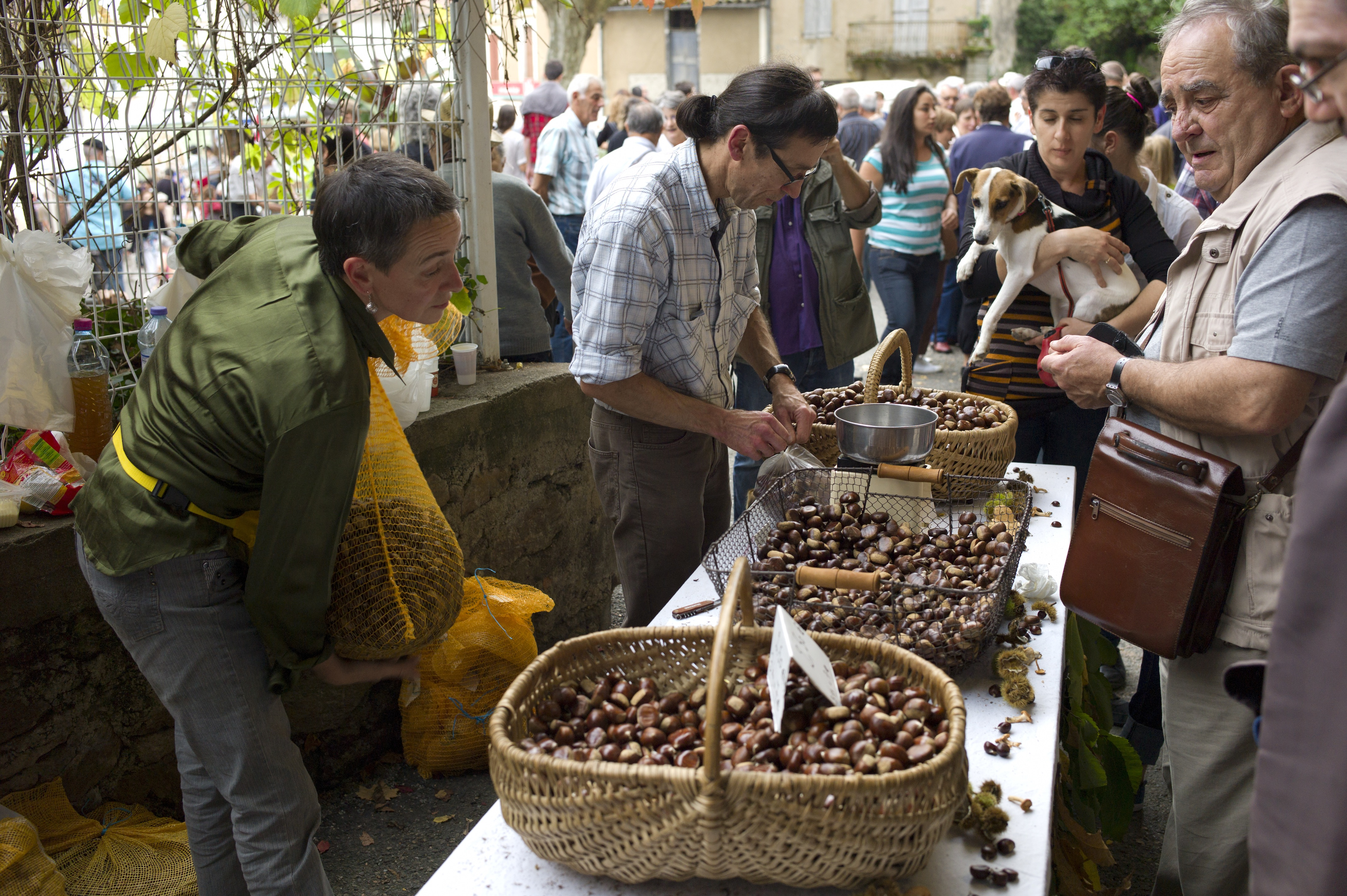 Laguepie market