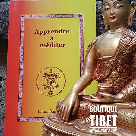 Livre : Apprendre à méditer de Lama Samten