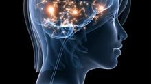 Surmonter la négativité mentale et nos difficultés cérébrales ?