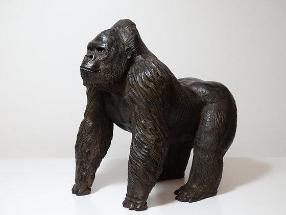 Gorille debout