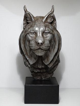 Buste Lynx