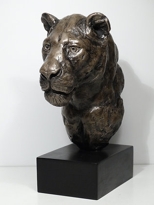 Buste lionne