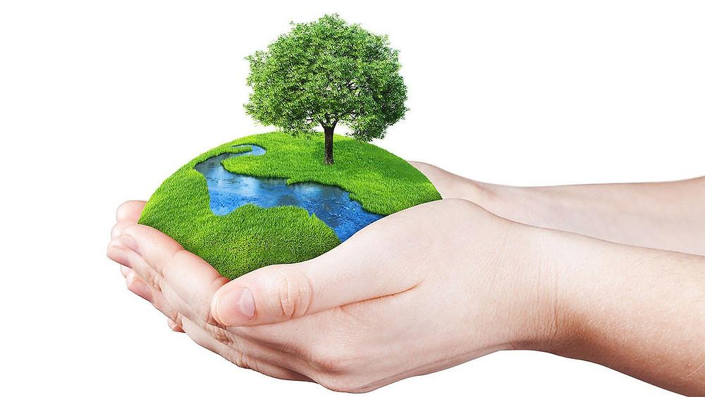 Heute ist der Tag der Umwelt. DieHEUSCHRECKEN präsentieren euch gerne ein paar nachhaltige Tipps, wie jede*r ganz leicht mithelfen kann unsere Erde ein bisschen gfesünder werden zu lassen.
