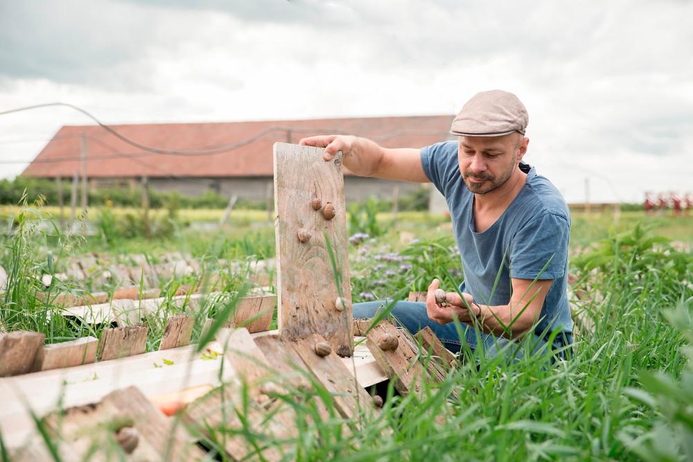 Die Future Farm am Gugumuck-Hof möchte neue und nachhaltige Wege in der Landwirtschaft aufzeigen.