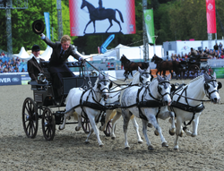 2014-09-05 22-55-26 Gallery - Royal Windsor Horse Show.png