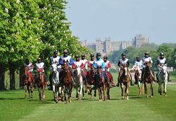 2014-09-05 22-53-40 Gallery - Royal Windsor Horse Show.png