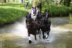 2014-09-05 22-54-11 Gallery - Royal Windsor Horse Show.png
