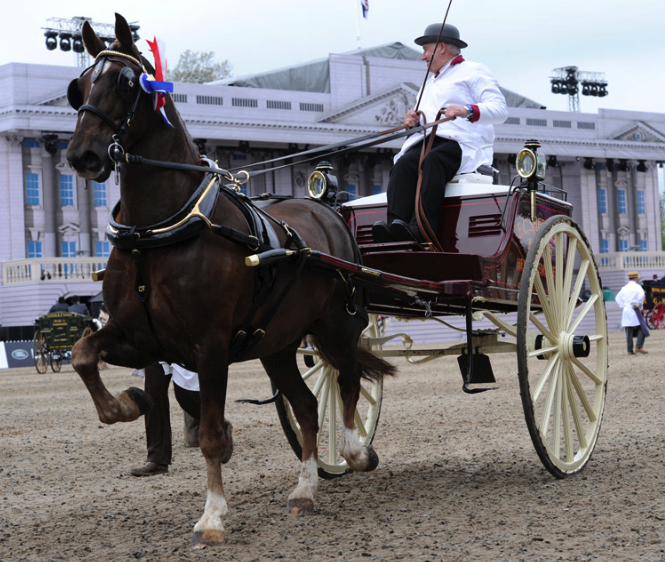 2014-09-05 22-55-54 Gallery - Royal Windsor Horse Show.png