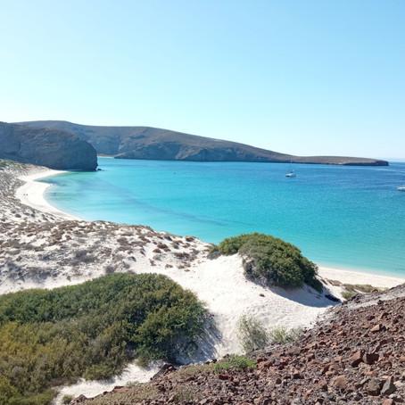 Une semaine en Baja California Sur