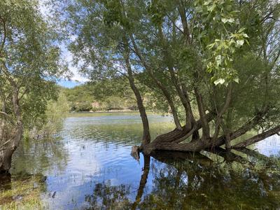 Visiter le Lac de Carcès