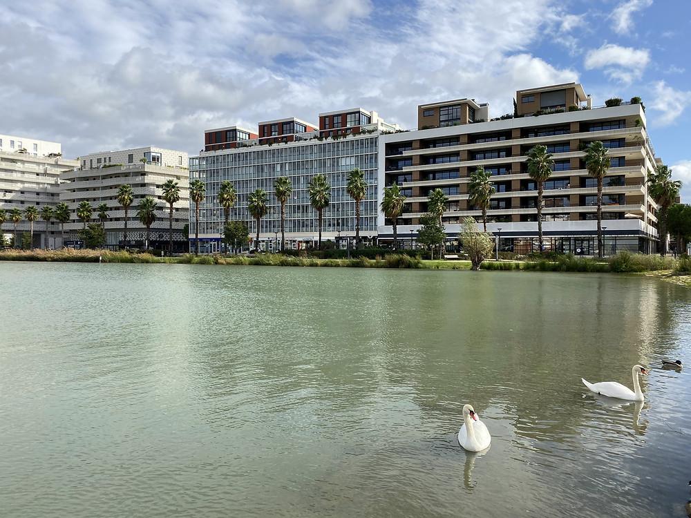 port_marianne_Montpellier