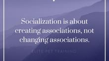 Socialization vs. Counterconditioning