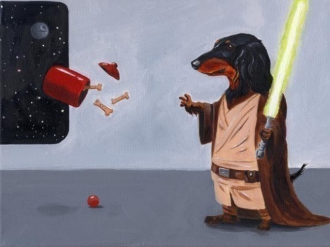 Dog Trainers are Jedi Masters