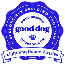 lightning-round-aussies-badge.png