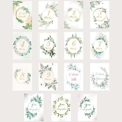 Cartes étapes grossesse mois par mois lot de 15 cartes florales