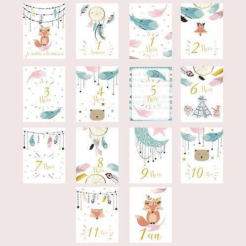 Cartes étapes première année bébé fille mois par mois lot de 14 cartes