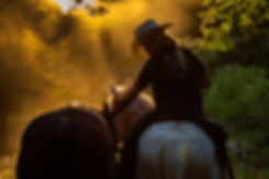 Performance Horsemanship_029.jpg